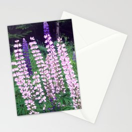 Lupines I Stationery Cards