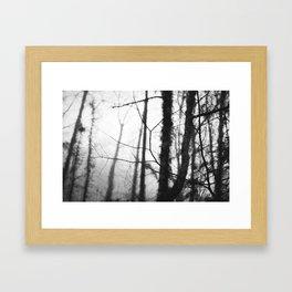 Quiet Rain II Framed Art Print