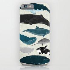 Whales and Porpoises sea life ocean animal nature animals marine biologist Andrea Lauren iPhone 6s Slim Case