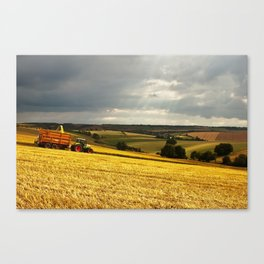 Summer harvest  Canvas Print