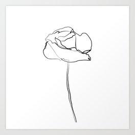 """Botanical Collection"" - Poppy Flower Art Print"