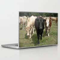 cows Laptop & iPad Skins featuring Cows by Rachel's Pet Portraits