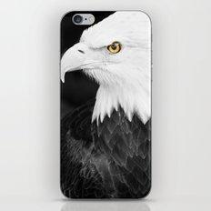 Bald Eagle with Yellow Eye iPhone & iPod Skin