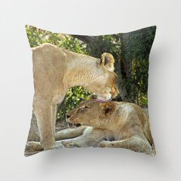 Lioness Pride Throw Pillow