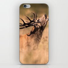 Red Deer Stag iPhone Skin