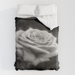Pink Roses in Anzures 3 B&W Comforters