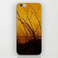 north carolina iPhone & iPod Skins featuring North Carolina Dunes by Madison Genevieve