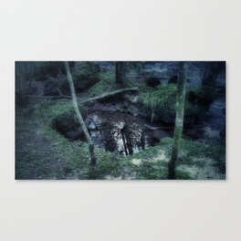 from the world below Canvas Print