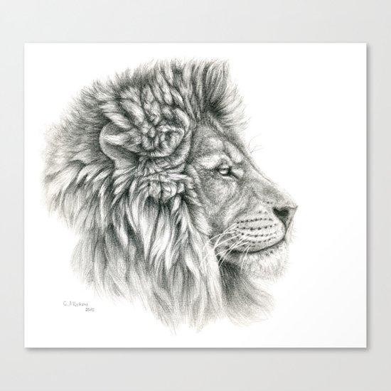 Lion - profile G044 Canvas Print
