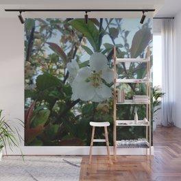 flower and light - White flower 3 Wall Mural