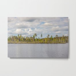 Forest in Finland Metal Print