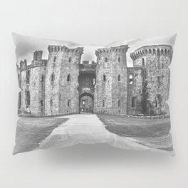 A Symbol of Power Pillow Sham