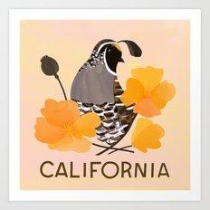 California State Bird and Flower Art Print
