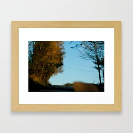 Orange Allergany Framed Art Print