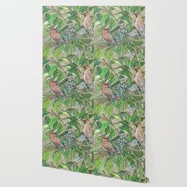 Cedar Waxwings bird and berries Wallpaper