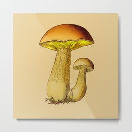 Mushrooms (Boletus edulis) Metal Print