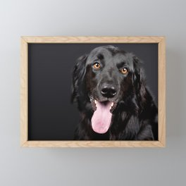 Happy Black Labrador Retriever Framed Mini Art Print