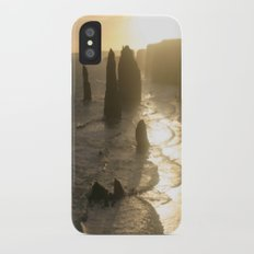 Evolutionary history of life on Earth  iPhone X Slim Case