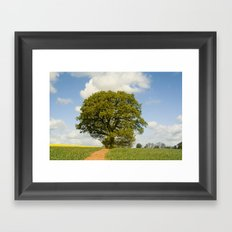 Path to my Tree Framed Art Print