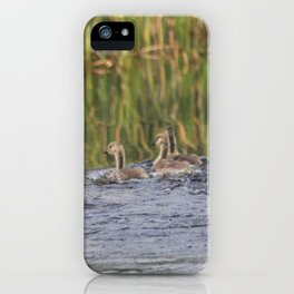 Canadian family Swim day iPhone Case
