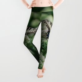We delight in the beauty of the butterfly.... Leggings