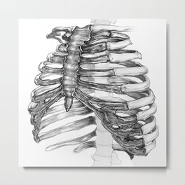 Rib Cage Metal Print