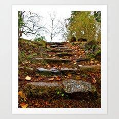 Stone stairway Art Print