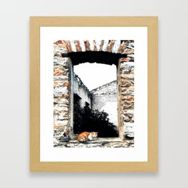 Cat in the Abandoned Home Window Framed Art Print
