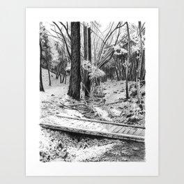 Dry creek. Art Print
