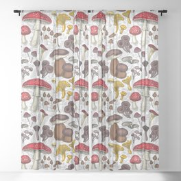 Wild mushrooms Sheer Curtain