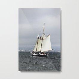 San Francisco Sailboat Metal Print