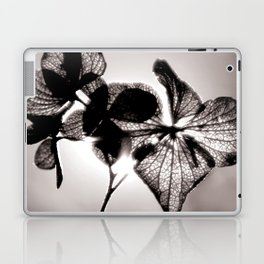 Sun Shine Laptop & iPad Skin