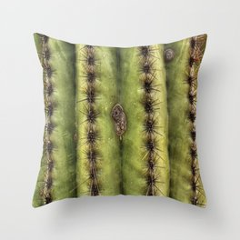 Arizona Close Up Throw Pillow