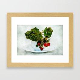 Fresh raspberries in a teacup Framed Art Print