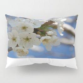 Beautiful Delicate Cherry Blossom Flowers Pillow Sham