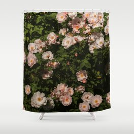 The Heart Of The Summer #3 Shower Curtain