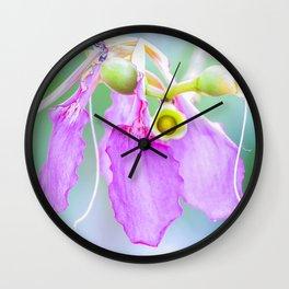 NEWBORN DECAY Wall Clock