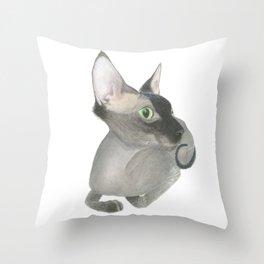 The Fuzzy Sphynx Throw Pillow
