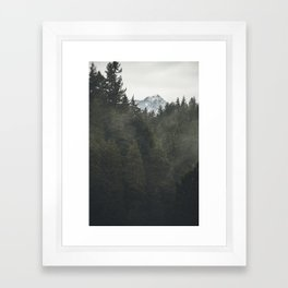 British Columbia Trees Framed Art Print