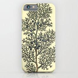Red Cedar iPhone Case