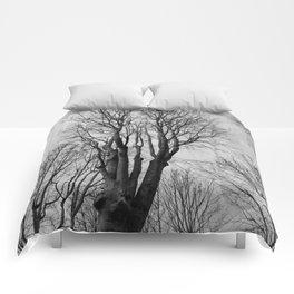 Wilt Beauty Comforters