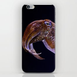 lovely little cuttle iPhone Skin