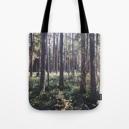Pine Forest in Sunlight Tote Bag