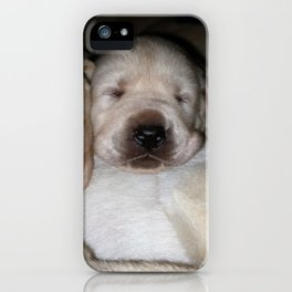 Little Polar Bears with yellow lab puppies iPhone Case