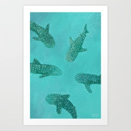 Whalesharks Art Print