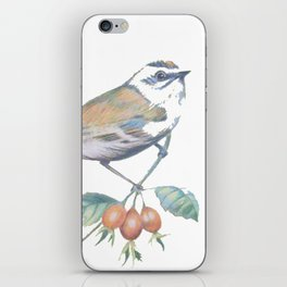 Little Snowbird #bird iPhone Skin