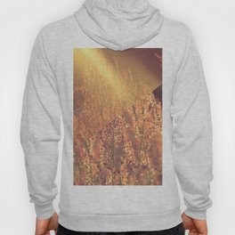 Golden Days Of Spring Hoody
