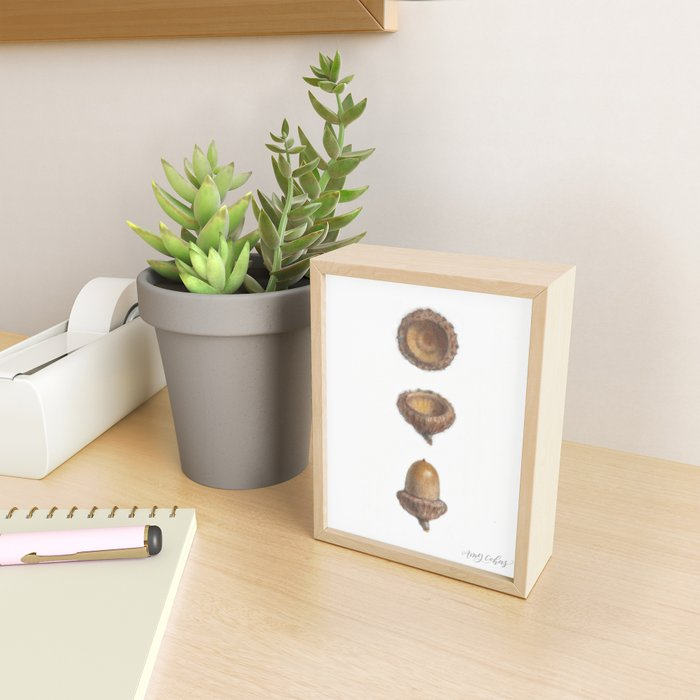Autumn Acorn Study Framed Mini Art Print