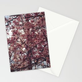 Spring Came Slowly Stationery Cards
