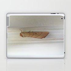 beauty in the mundane - moth Laptop & iPad Skin